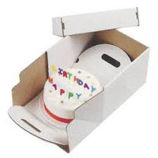 Cake Transport Box HEAVY DUTY 12 Inch