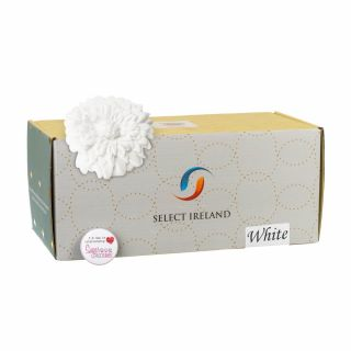 Select Ireland Sugarpaste SUPREME SILK WHITE 5Kg