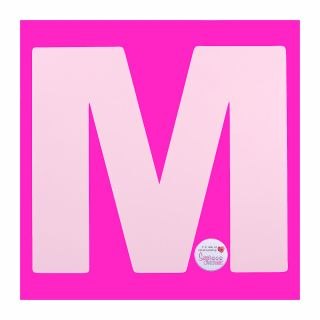 Stencil Large M 10 Inch