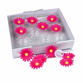 SugarSoft 20 Edible Assorted Pink Daisies 50mm