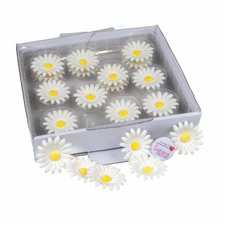 SugarSoft 20 Edible Assorted White Daisies 50mm