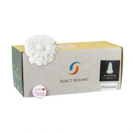 Select Ireland Sugarpaste PLATINUM Edition WHITE 5Kg